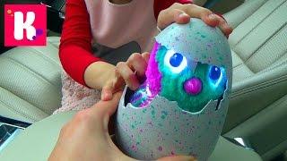 ВЛОГ Коктейли из шоколада M&M's Катя принимает роды у яйца Макс едет на День Рождение одноклассника