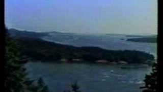 Margaret Atwood Bodega video 1993.MPG