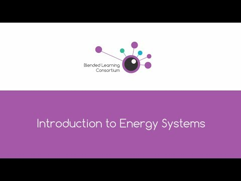 Sport - Introduction to Energy Systems