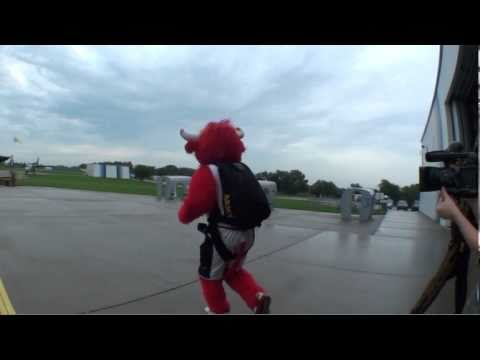 Benny the Bull Skydiving with the Army Golden Knights