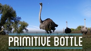 Ostrich Egg and Bottle Gourd Primitive Bottles | How To Make Everything: Bottle (2/4)