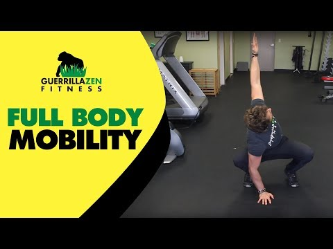 Full Body Mobility Routine | DO THIS AT HOME!