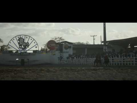 BOI NEON - Tráiler oficial subtitulado en español