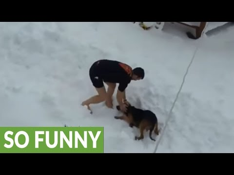 Crazy dude works out shirtless in the snow, dog happily joins him