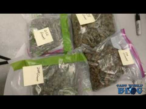 In Lake Worth, more heroin demand leads to more gang activity