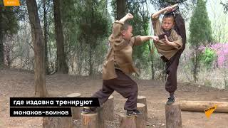 Закалка с детства: Малышей от 6 лет тренируют кунг-фу в китайском Шаолине
