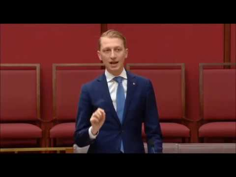 Senator Paterson criticises renewable energy subsidies