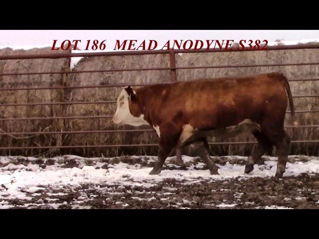 Mead Farms Lot 186