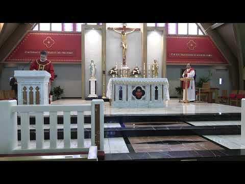 Daily Mass 11/24/20