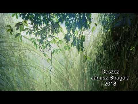 Deszcz. Janusz Strugała. Poezja śpiewana. 2018