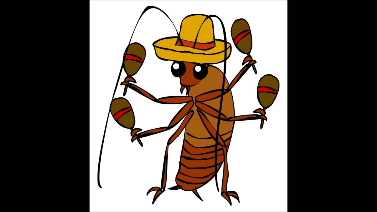 Nick Petricci - La cucaracha (arrangement) - YouTube