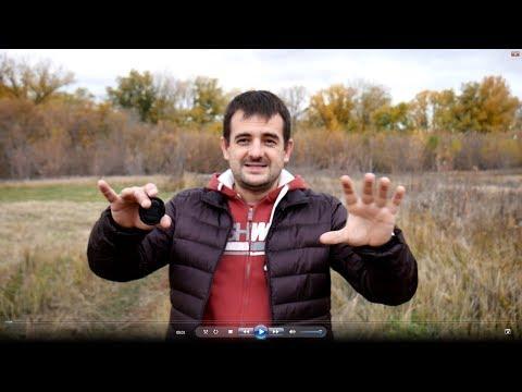 Как заработать на лесе