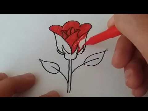 ÇOK KOLAY !!! Adım Adım Gül Çizimi___Rose Drawing