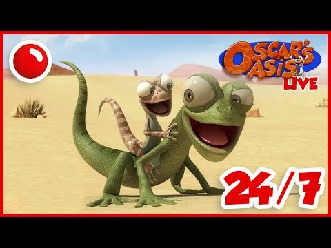download NEW Oscar's Oasis - HD Live Stream Full Episodes 24/7 🔴
