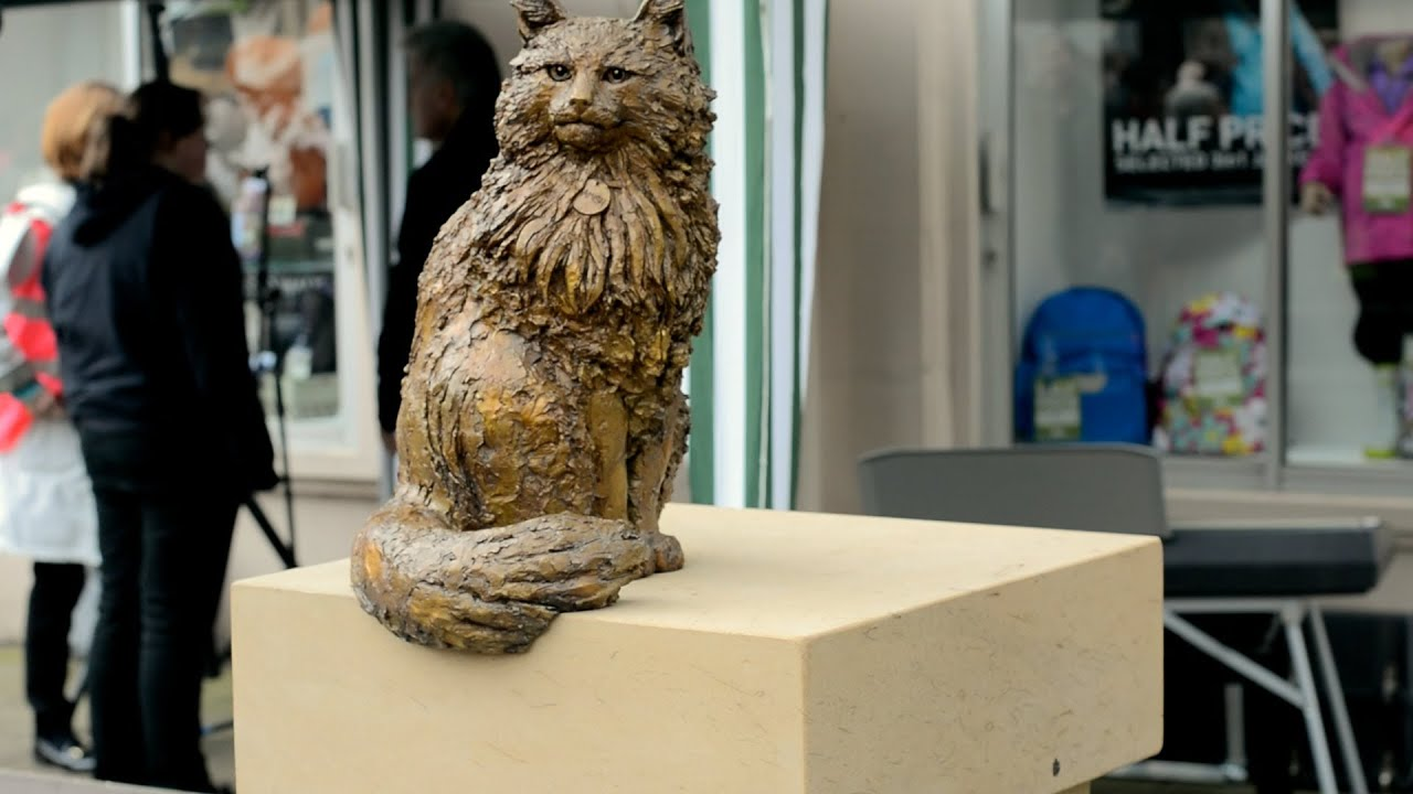Paw-some! Hamish McHamish statue unveiled in St Andrews - YouTube