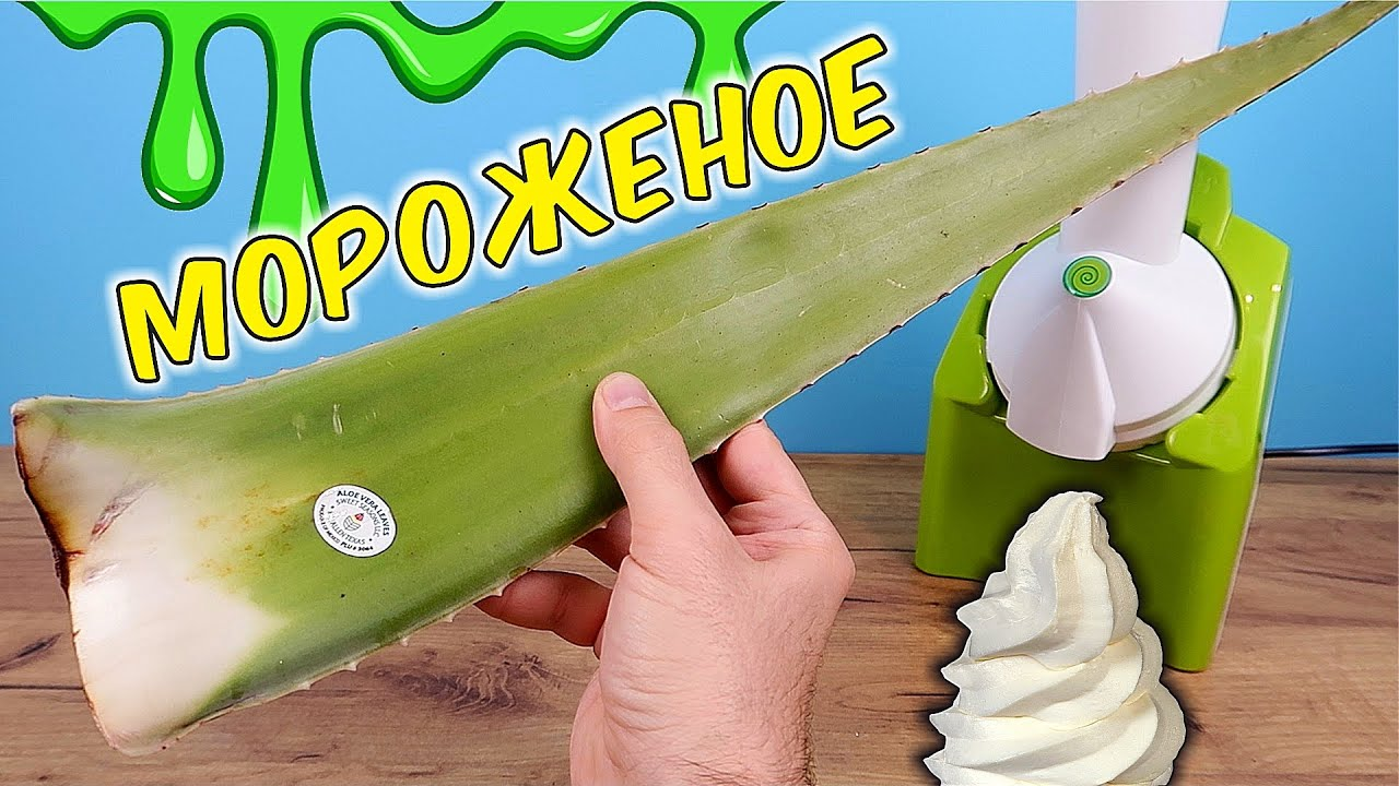 Что если сделать МОРОЖЕНОЕ из огромного листа Алоэ? Самое мерзкое в мире мороженое!