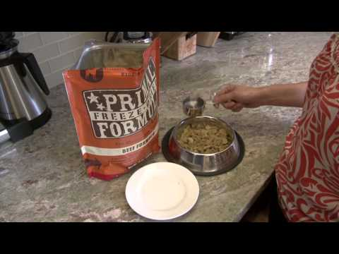 How to Feed Primal Freeze-Dried Formula