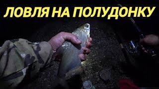 Ловля на полудонку.Ночная рыбалка
