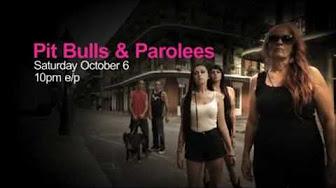 Pit Bulls And Parolees Season 8 Episode 1 2 3 4 5 6 7 8 9 10 11 12 13 14 15 16 Youtube
