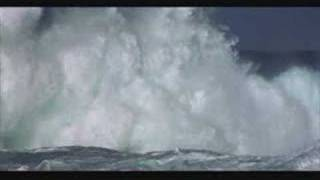Jonathan Livingston Seagull - Skybird
