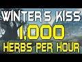 1000+ Herbs Per Hour! - Winters Kiss - WoW BFA Gold Farm