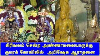 அண்ணாமலையாருக்கு, குமரக் கோவிலில்  சிறப்பு அபிஷேக ஆராதனை | Thiruvannamalai | Britain Tamil Bhakthi
