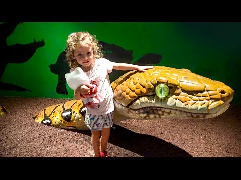 Kid and wild animals at the Zoo, Family Fun Activities and Toddlers Funny video for kids