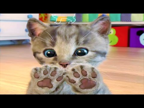 Liltle Kitten Cute Pet Care Fun, Baby Play With My Favorite Cat - Pet Care Game