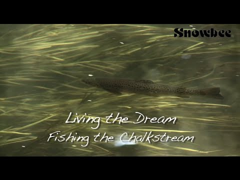Ultimate Chalkstream Fly Fishing For Big Trout, Small Stream (WildernessTV)