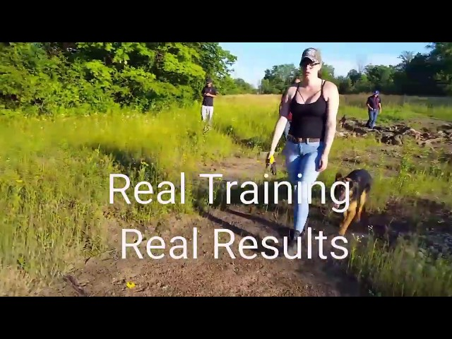 Peak into our Off Leash Obedience Class
