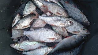 Трудовая рыбалка на Можайском водохранилище Февраль 2021 года