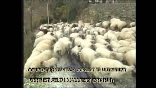 dokumentar per fshatin mallkeq vlore