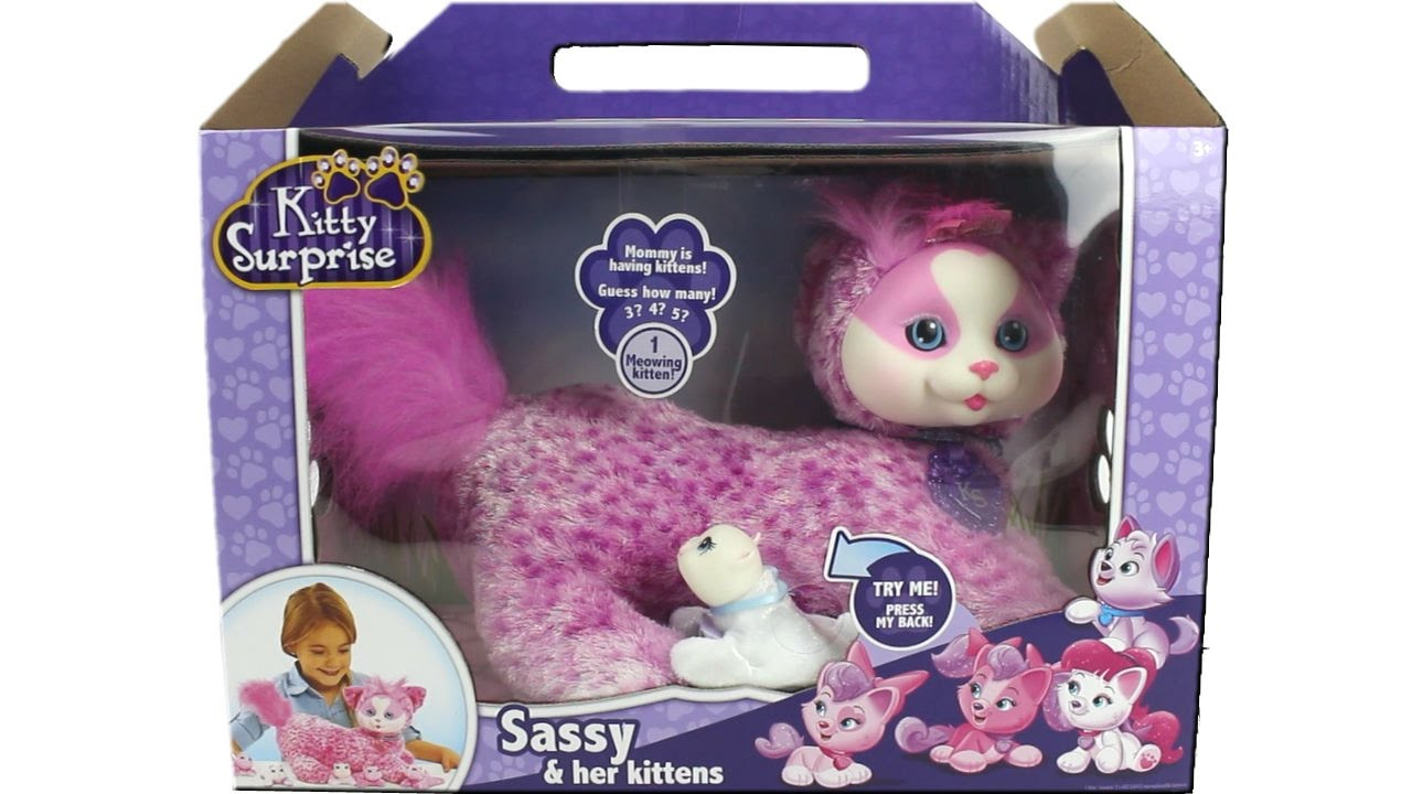 Kitty Surprise Sassy And Her Kittens Unboxing Review