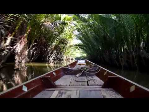 Boat trip in Jungle. Thailand. River Kwai. Surat Thani