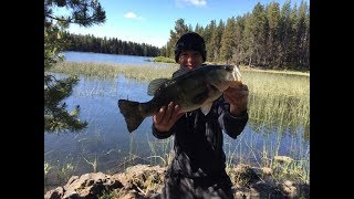How To Catch Large Mouth Bass At Crane Prairie Oregon