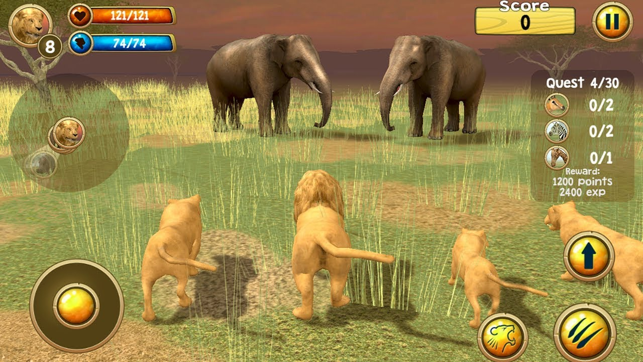 Wild Lion Simulator 3D (by Turbo Rocket Games) Android Gameplay [HD]