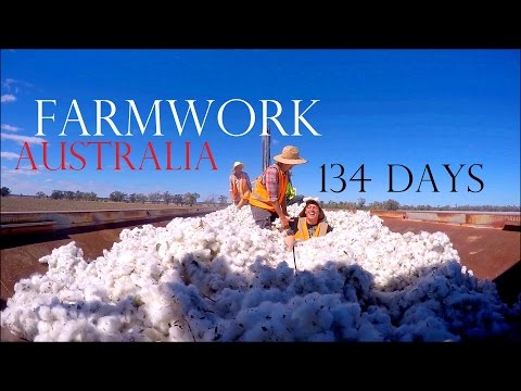 134 DAYS OF FARM WORK IN AUSTRALIA ❤️ WORK AND TRAVEL AUSTRALIA - Worldtravels / BACKPACKING