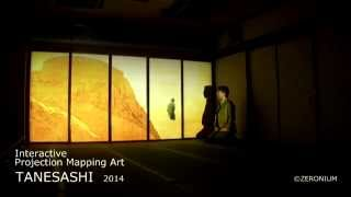"Interactive Projection Mapping Art ""TANESASHI""  Short Version"