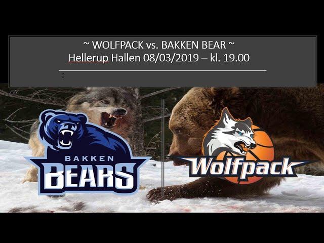 Ulve mod bjørne