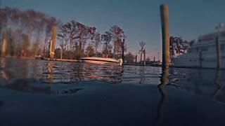 Shark Island (trailer)