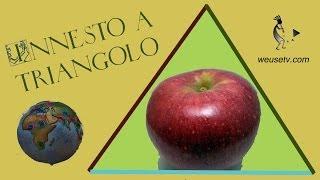 Botanica e giardinaggio - Melo Stayman - Innesto a triangolo (Lorenzo Bonino) - Tecniche di innesto
