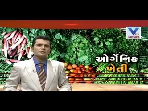 KHETI  | 16th July'16 | VTV Gujarati