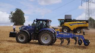 New Holland CX6.80. Żniwa po polsku.