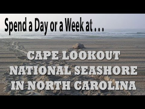 Not to be missed!  Cape Lookout National Seashore North Carolina