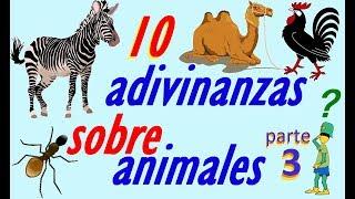 adivinanzas sobre animales 10 - adivina adivina adivina adivina cual es el animal 3