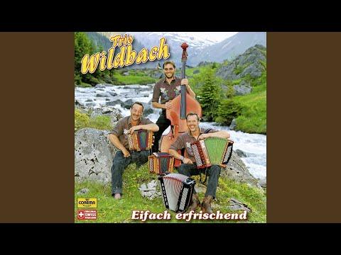 Wo's üs allne gfallt (feat. Roger Diethelm, Bernhard Glarner) (Miär sind dou hiä im...