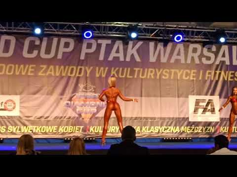 """Diamond Cup Warsaw "" up to 162"