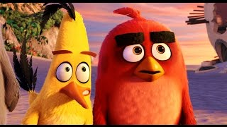 ANGRY BIRDS Movie Clips