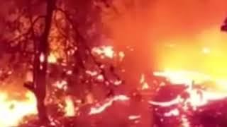 Hawaii volcano SKYROCKETS as eruption enters week four