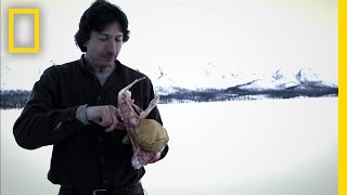 Fast Food | Life Below Zero